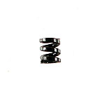 OFNA/Team C TS2 Short Course Differential Spring (T02047) 60033